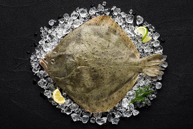 Recettes de poissons et crustacés : dégustation, entrées et plats à Biarritz | Chez Albert